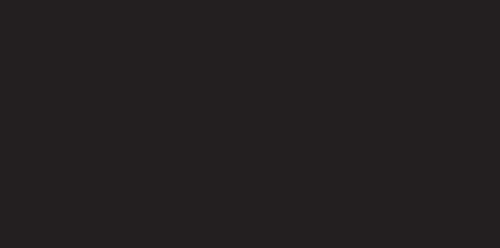 L-E-V